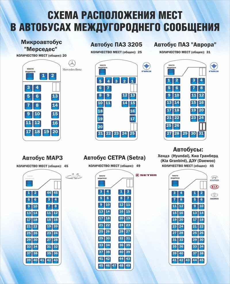 Схема місць в автобусах